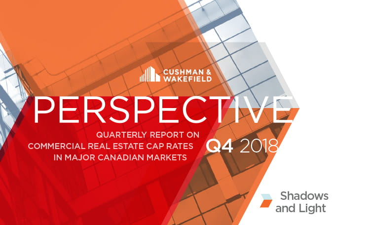 Q4 2018 Perspective Report