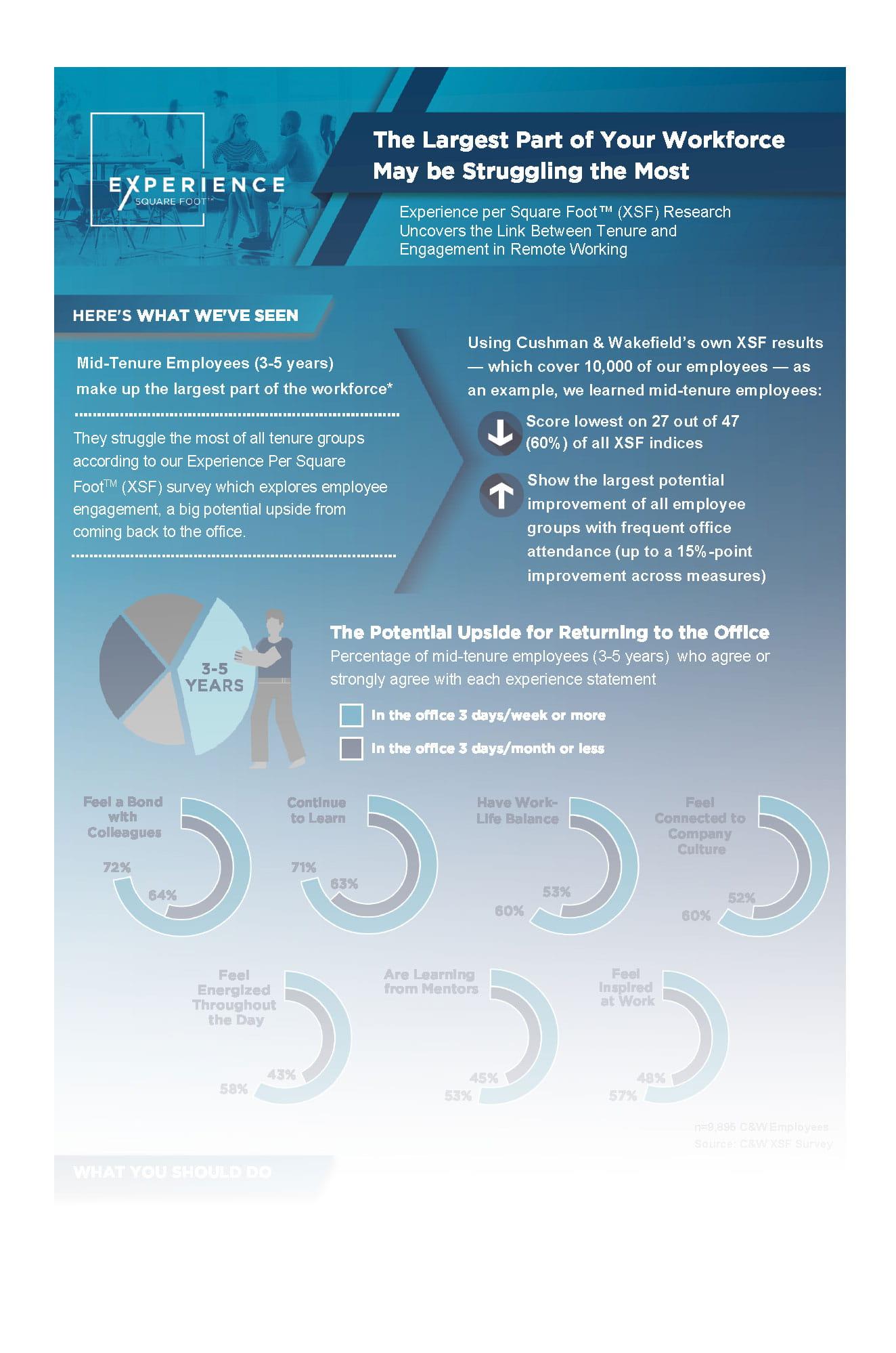 XSF Infographic (image)