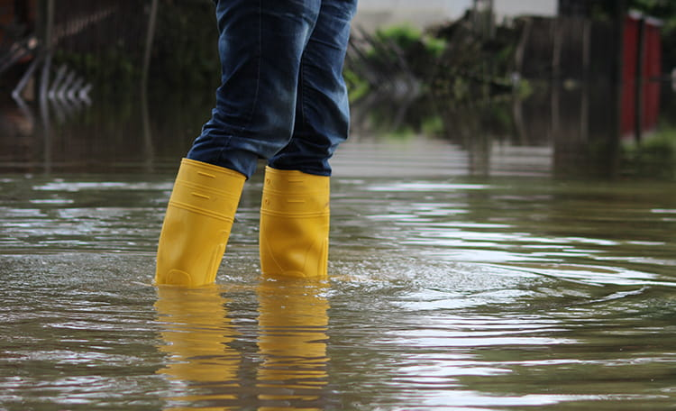 Yellow Boots In Flooding