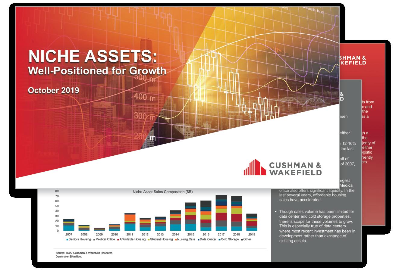 Niche Assets Report Thumbnail