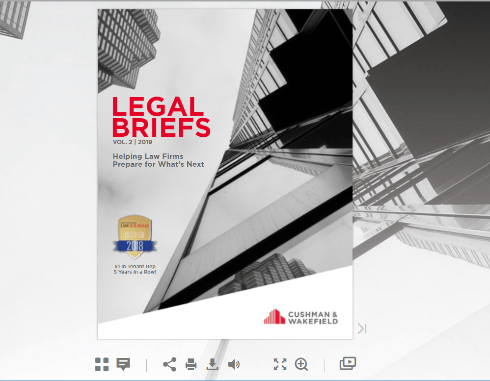 Legal Briefs Volume 2 Interactive