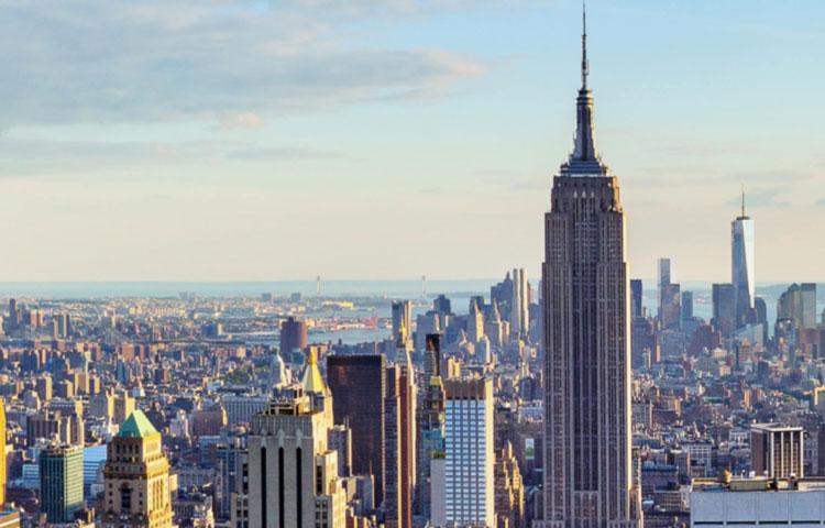 New York City Tenant Rep (image)