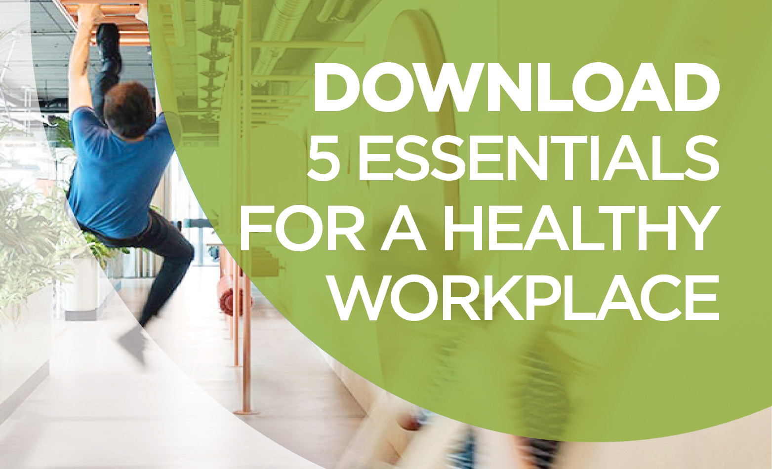 5 Essentials for a healthy workplace