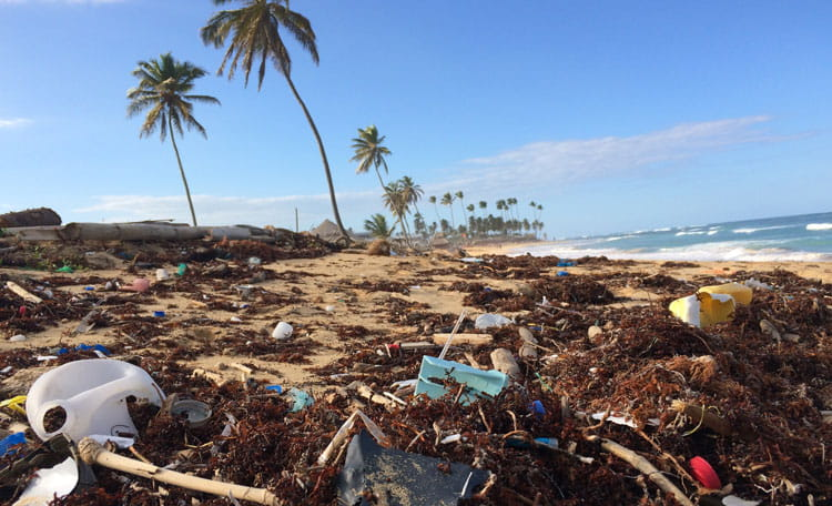 plastics on beach (image)