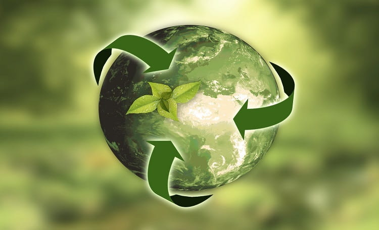 Earth Day – A Reflection