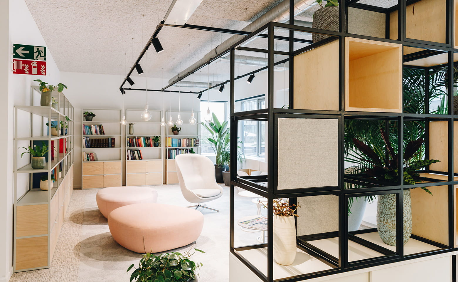 Roche new offices by Cushman & Wakefield Design + Build
