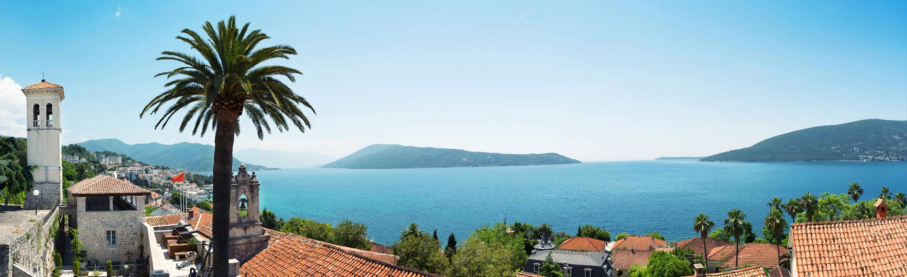 Montenegro Office