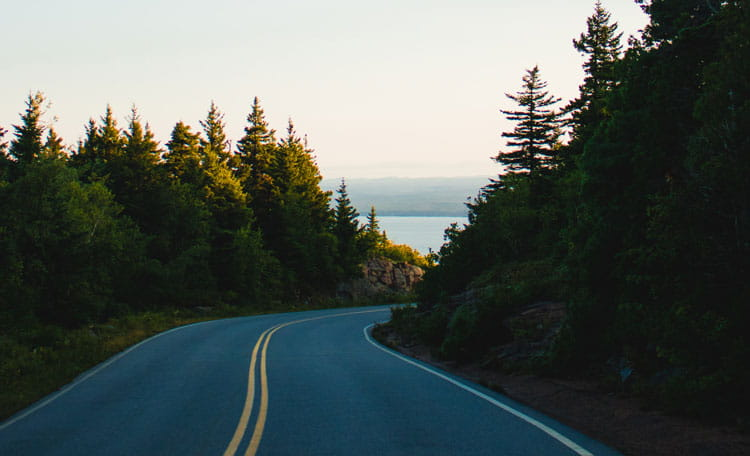 US winding road through trees, lake or sea in view ahead