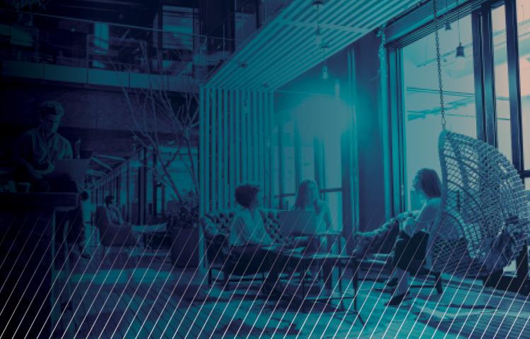 people sitting in open office area by large window in blue duotone