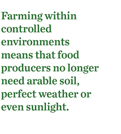 Urban Farming (image)