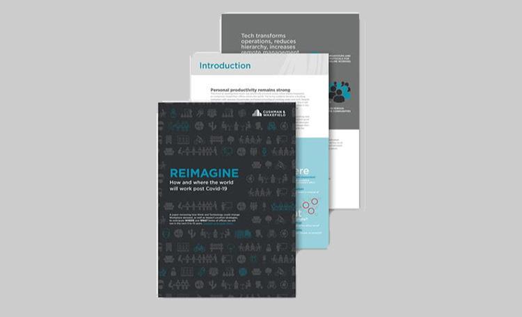 Reimagine Report (image)