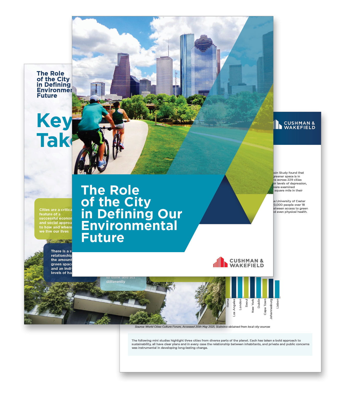 role of the city report (image)