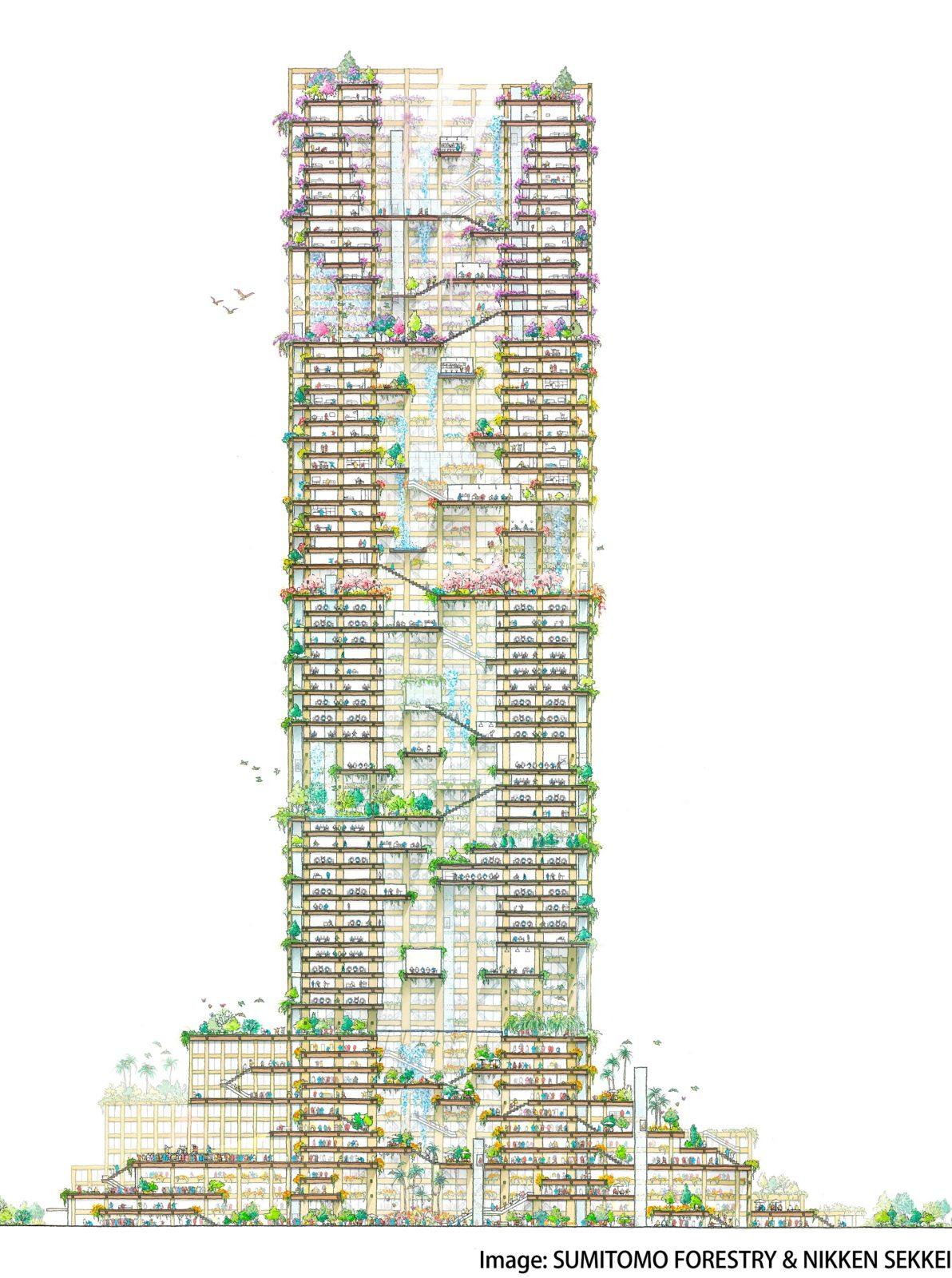 W350-4-1192x1600
